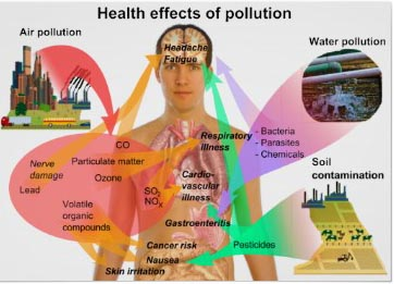essay on air pollution and its effects on human health