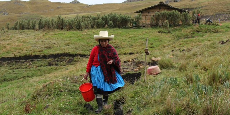 A subsistence farmer in Peru's northern highlands, Máxima Acuña stood up for her right to peacefully live off her own property, a plot of land sought by Newmont and Buenaventura Mining to develop the Conga gold and copper mine. | Credit: Goldman Environmental Prize.