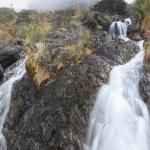 waterfall in the Santurbán páramo