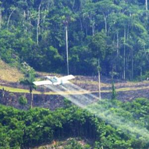 Avioneta rocía glifosato cerca de una casa