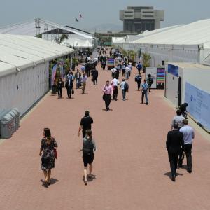 Buscando compromisos financieros y soluciones sostenibles en la Conferencia de Cambio Climático de la ONU