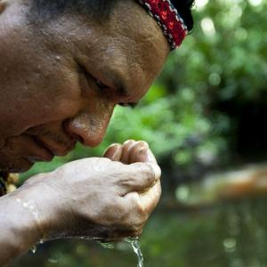 Indigenous leader Cofan Ermenegildo Criollo