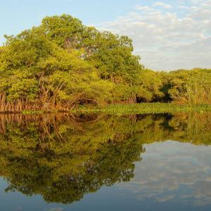 AIDA llama a proteger efectivamente los humedales en las Américas