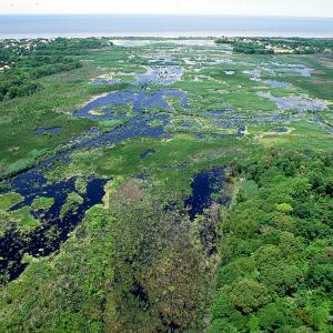Aerial view over green wetlands, spotted with ponds, reaching out to the Atlantic.
