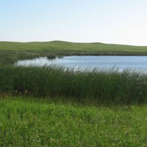 the green and blue grasslands of North Dakota