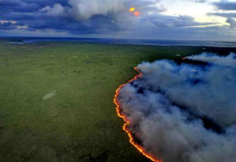 Foto: Incendio forestal. Crédito: www.elamerica.cl.