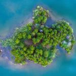Es clave preservar y restaurar ecosistemas que de forma natural capturan grandes cantidades de carbono de la atmósfera como ríos, humedales, océanos, bosques y manglares. | Crédito: Nathan Anderson.