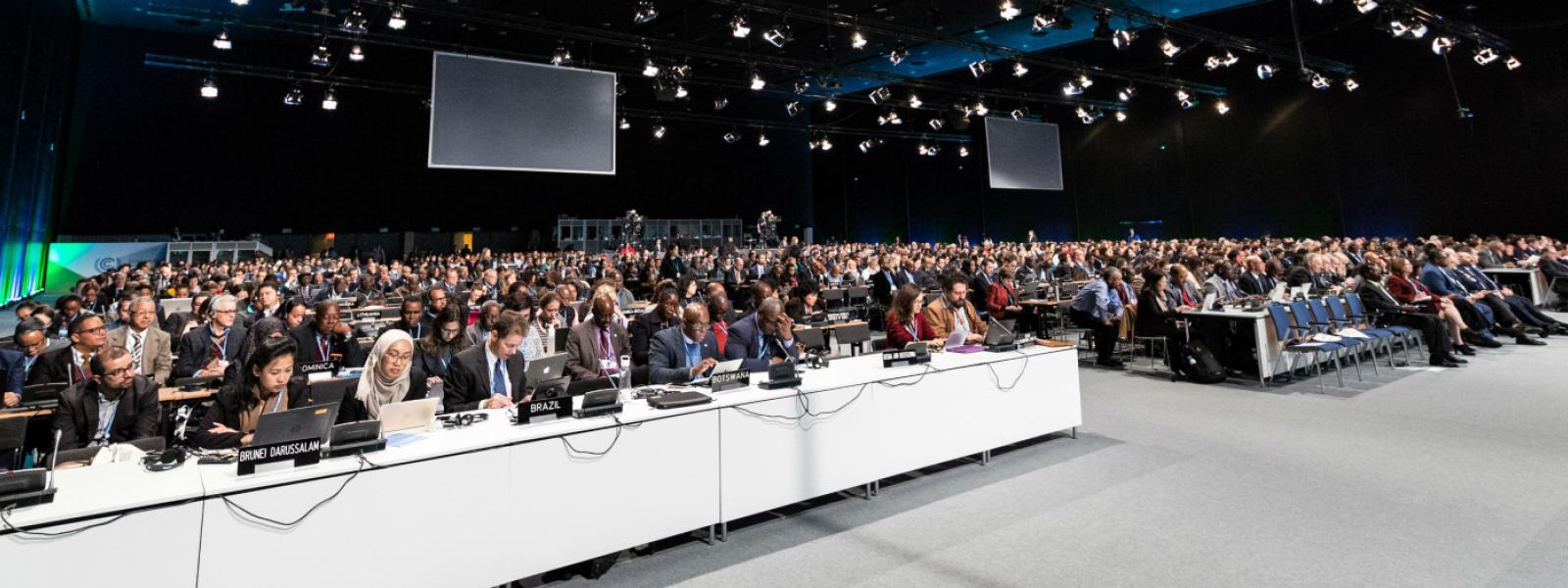 Noticias sobre las negociaciones climáticas en la COP24