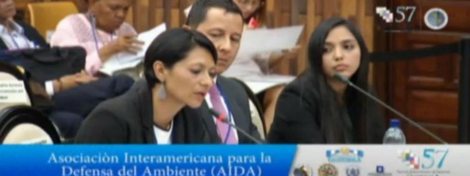 Astrid Puentes, codirectora de AIDA, interviene en la audiencia pública de solicitud de opinión consultiva presentada por el Estado de Colombia ante la Corte IDH.