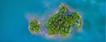 Wetland, a natural carbon sink