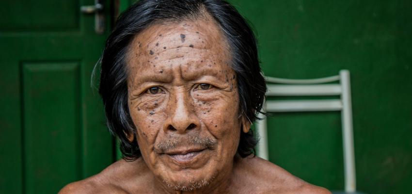 Brazilian indigenous
