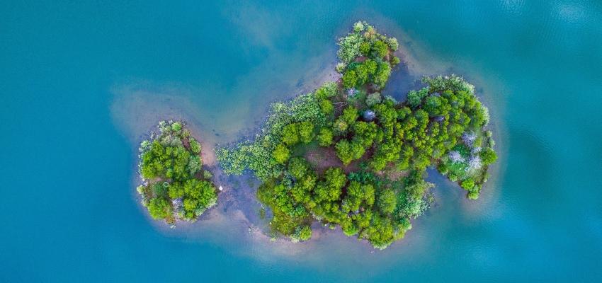 Humedal, sumidero natural de carbono