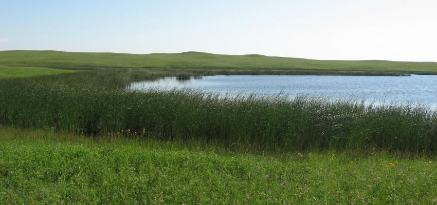 the green and blue grasslands of North Dakota