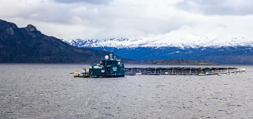 salmon farm in the water in front of a snowcapped mountain in Patagonia