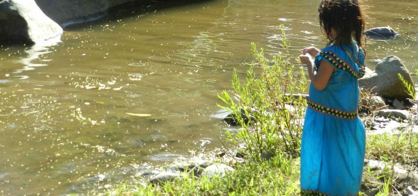 Informe independiente concluye que Bancos de Desarrollo de Alemania y Holanda incumplieron normas ambientales y de derechos humanos al financiar la represa Barro Blanco en Panamá