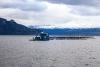 granja de salmon in plena mar en Patagonia chilena